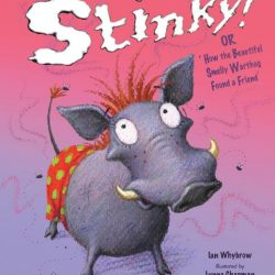 Stinky cover